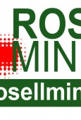 ROSELL MINERALS